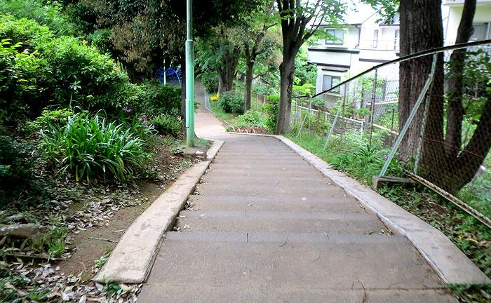 千代ヶ丘公園