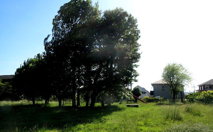 王禅寺北第3公園