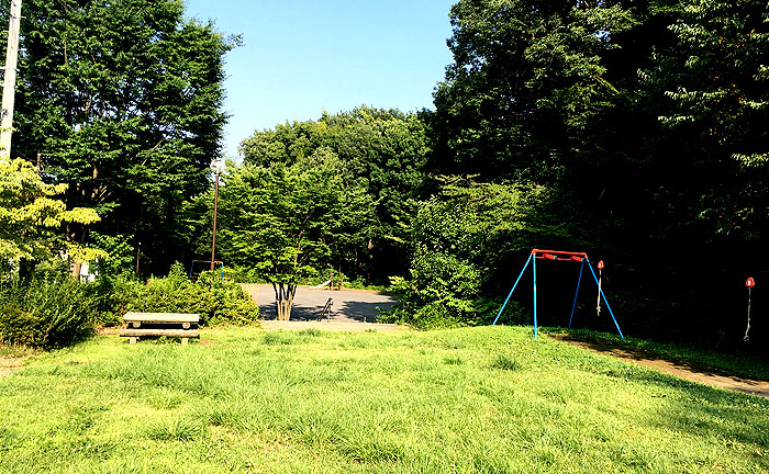 細山金井久保中央公園